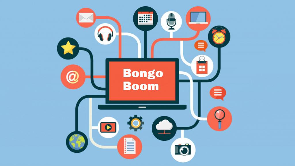 Welcome to Bongo Boom