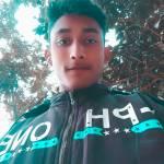 Mahmoud Islam Habib