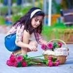 অনিক হাসান Profile Picture