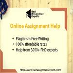 Best Assignment Experts UK
