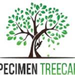Speci Men Tree Care